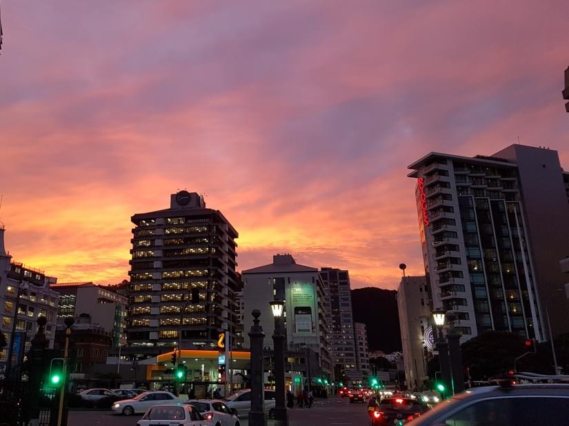 Wellington winter sunset